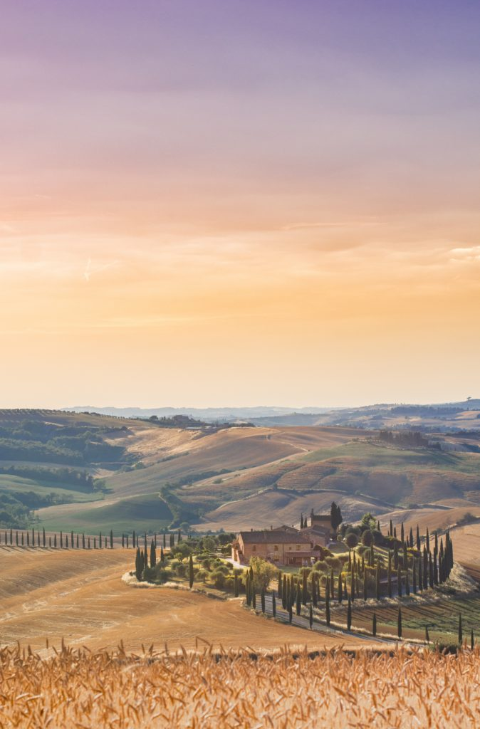 Enjoy The Tuscan Sun